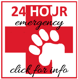 24 Hour emergency. click for info